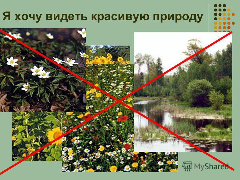 Я хочу видеть красивую природу
