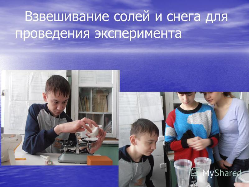 Взвешивание солей и снега для проведения эксперимента