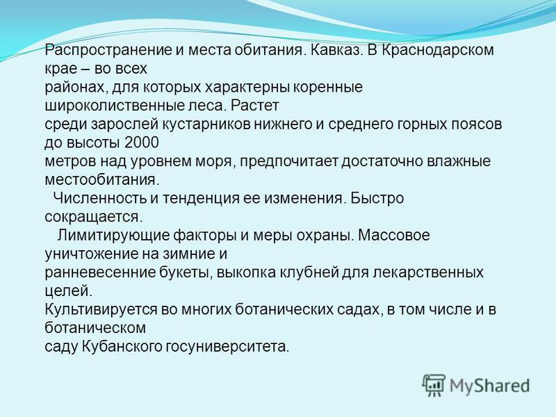 Распространение и места обитания. Кавказ. В Краснодарском крае – во всех районах, для которых характерны коренные широколиственные леса. Растет среди зарослей кустарников нижнего и среднего горных поясов до высоты 2000 метров над уровнем моря, предпо