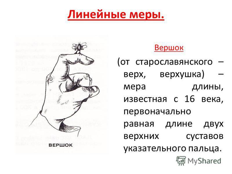 Линейные меры. Вершок (от старославянского – верх, верхушка) – мера длины, известная с 16 века, первоначально равная длине двух верхних суставов указательного пальца.