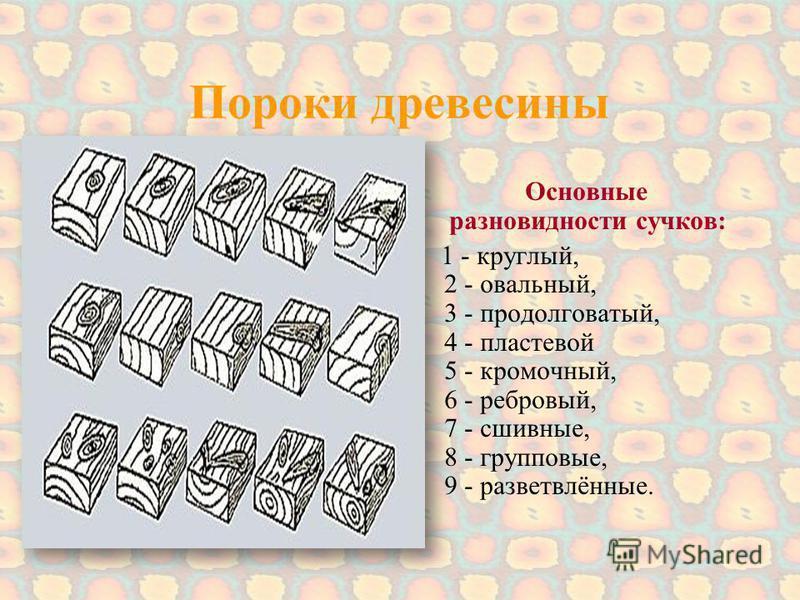 Пороки древесины Основные разновидности сучков: 1 - круглый, 2 - овальный, 3 - продолговатый, 4 - пластовой 5 - кромочный, 6 - ребровый, 7 - сшивные, 8 - групповые, 9 - разветвлённые.