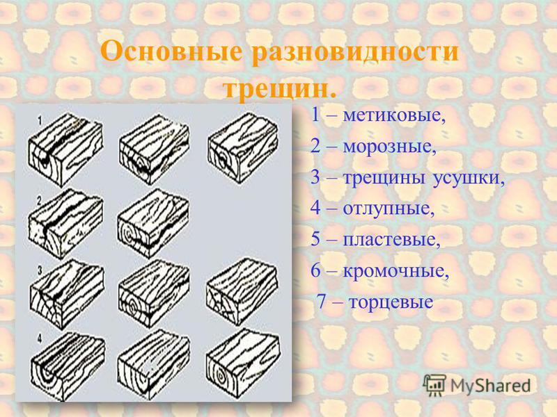 Основные разновидности трещин. 1 – мятликовые, 2 – морозные, 3 – трещины усушки, 4 – откупные, 5 – пластовые, 6 – кромочные, 7 – торцевые