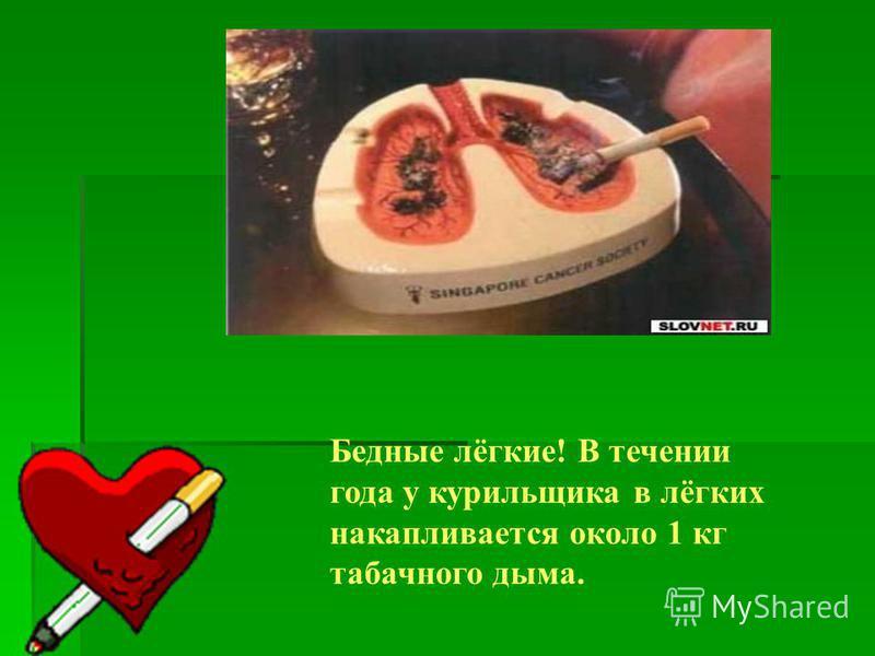 Бедные лёгкие! В течении года у курильщика в лёгких накапливается около 1 кг табачного дыма.