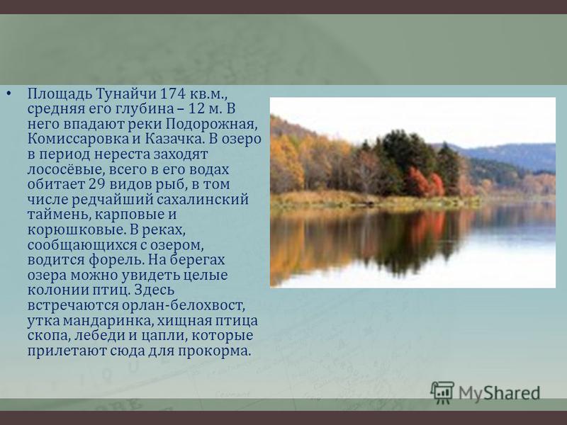 Площадь Тунайчи 174 кв.м., средняя его глубина – 12 м. В него впадают реки Подорожная, Комиссаровка и Казачка. В озеро в период нереста заходят лососёвые, всего в его водах обитает 29 видов рыб, в том числе редчайший сахалинский таймень, карповые и к