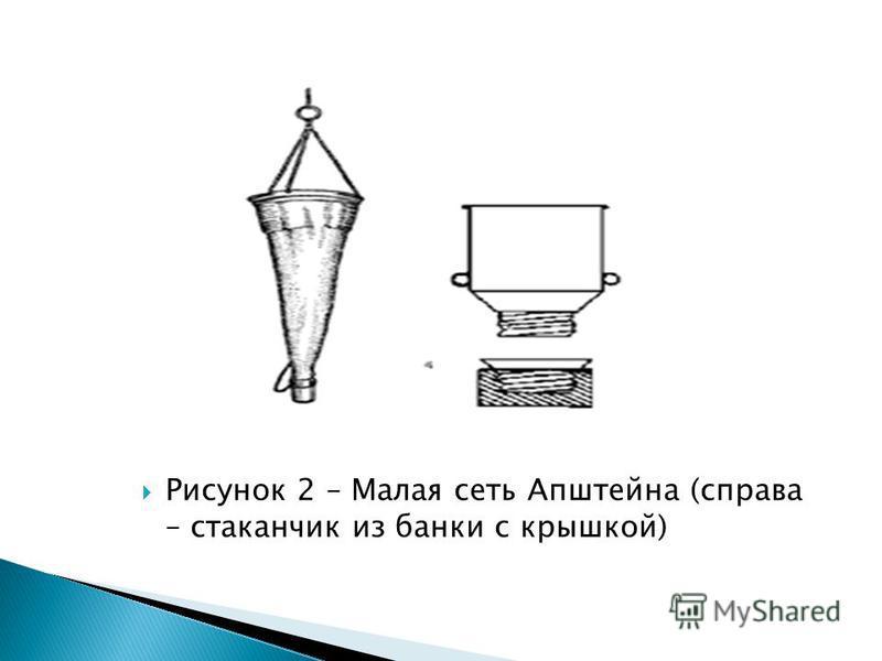 Рисунок 2 – Малая сеть Апштейна (справа – стаканчик из банки с крышкой)