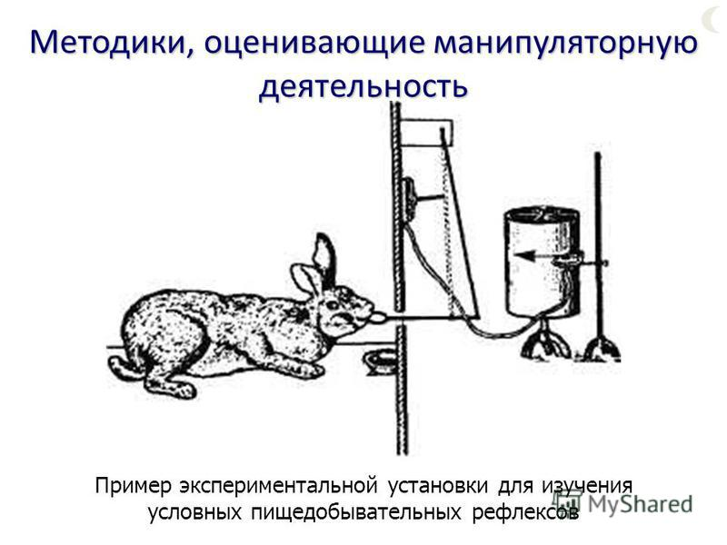 Пример экспериментальной установки для изучения условных пищедобывательных рефлексов Методики, оценивающие манипуляторную деятельность