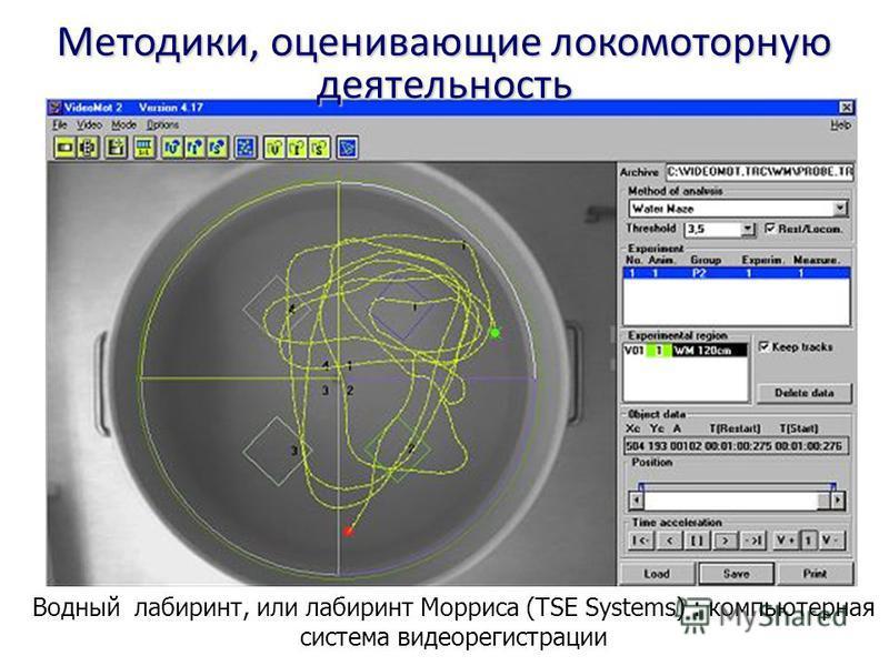 Водный лабиринт, или лабиринт Морриса (TSE Systems) : компьютерная система видеорегистрации Методики, оценивающие локомоторную деятельность