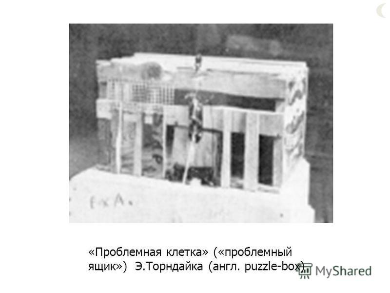 «Проблемная клетка» («проблемный ящик») Э.Торндайка (англ. puzzle-box)