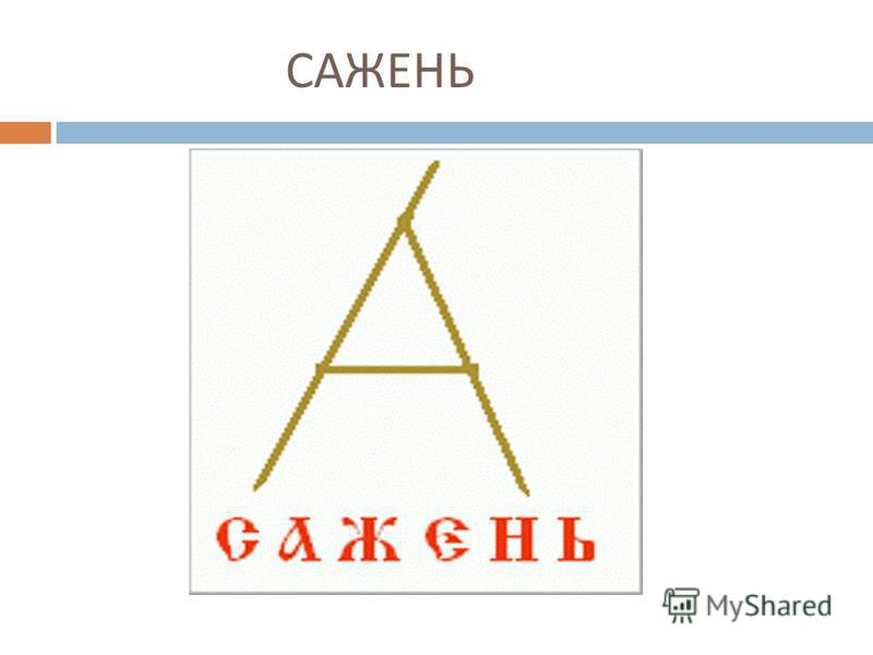 САЖЕНЬ