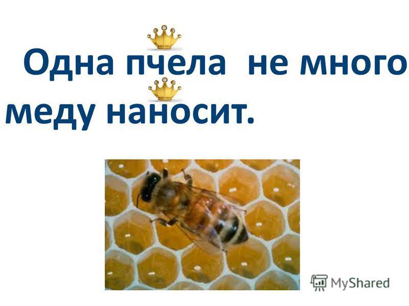 Одна пчела не много меду наносит.