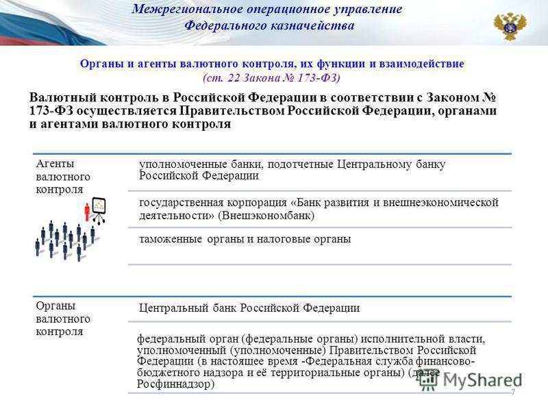 Валютный контроль в Российской Федерации в соответствии с Законом 173-ФЗ осуществляется Правительством Российской Федерации, органами и агентами валютного контроля Органы и агенты валютного контроля, их функции и взаимодействие (ст. 22 Закона 173-ФЗ)