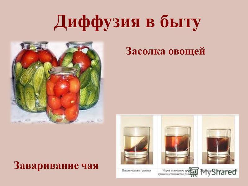 Диффузия в быту Засолка овощей Заваривание чая