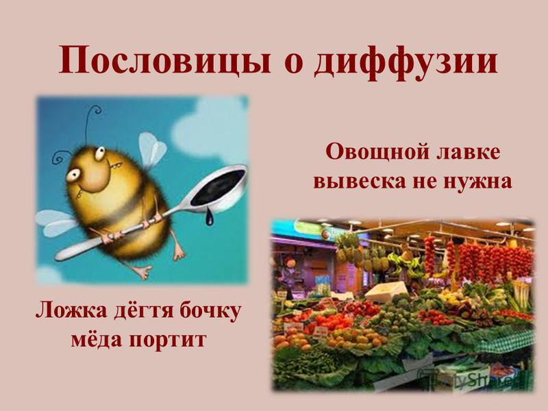 Пословицы о диффузии Ложка дёгтя бочку мёда портит Овощной лавке вывеска не нужна