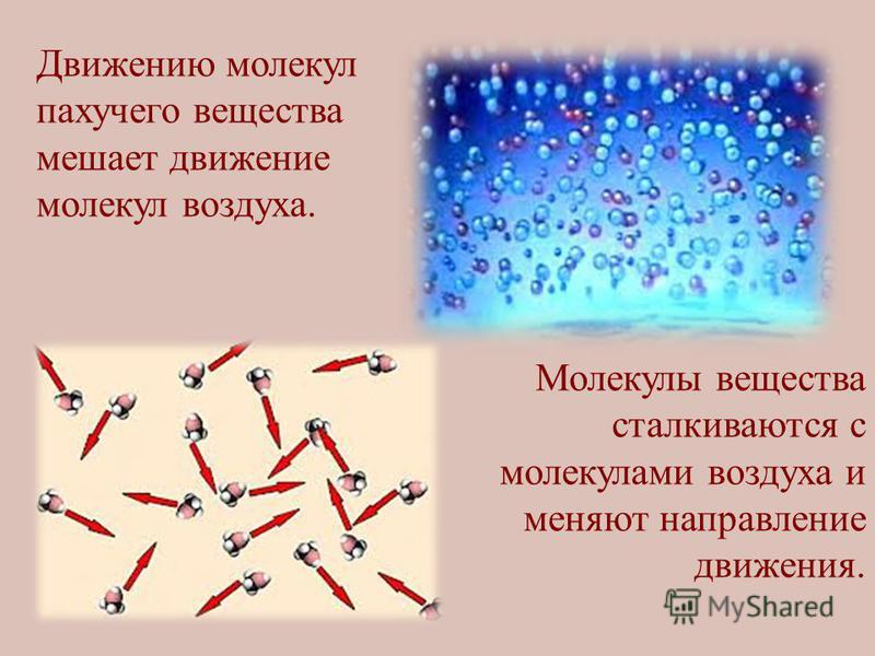 Движению молекул пахучего вещества мешает движение молекул воздуха. Молекулы вещества сталкиваются с молекулами воздуха и меняют направление движения.