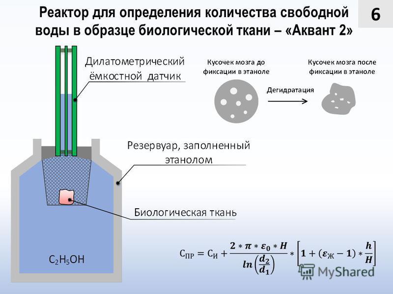 6 Реактор для определения количества свободной воды в образце биологической ткани – «Аквант 2»
