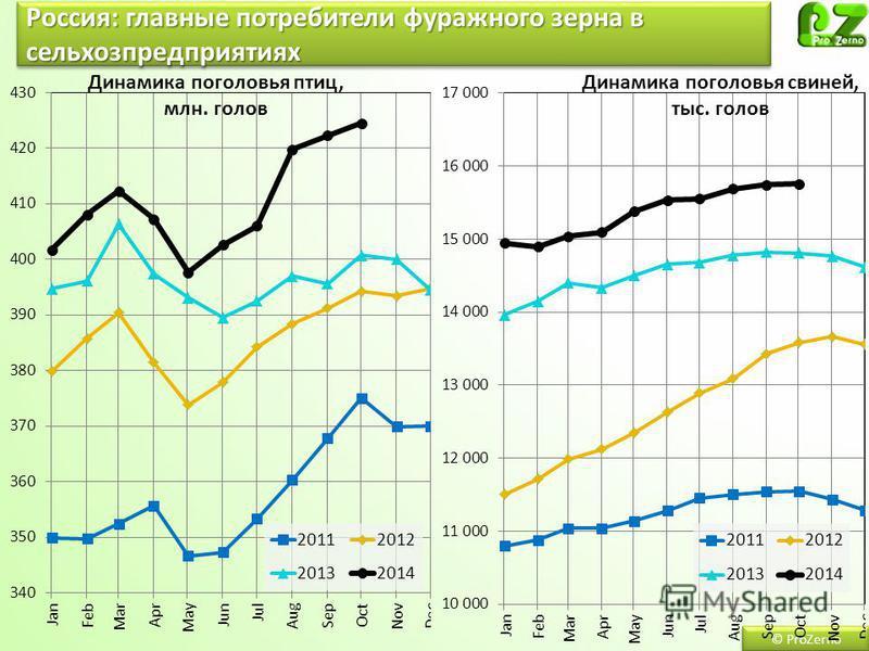 Россия: главные потребители фуражного зерна в сельхозпредприятиях