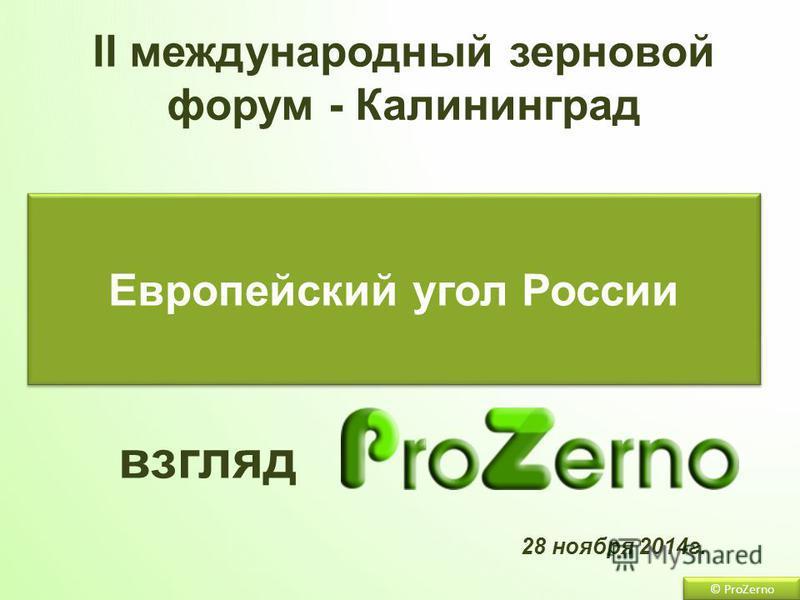 28 ноября 2014 г. Европейский угол России взгляд II международный зерновой форум - Калининград