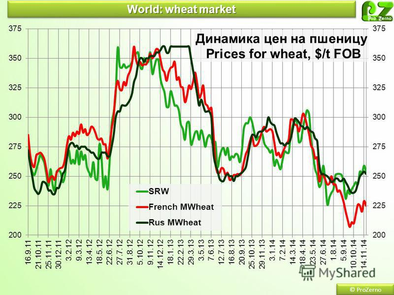 World: wheat market © ProZerno