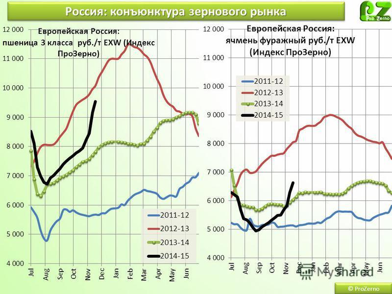 © ProZerno Россия: конъюнктура зернового рынка