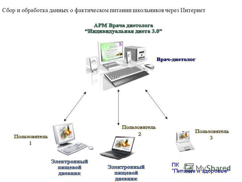Сбор и обработка данных о фактическом питании школьников через Интернет