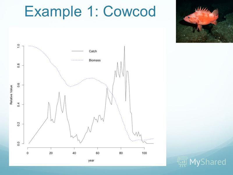 Example 1: Cowcod