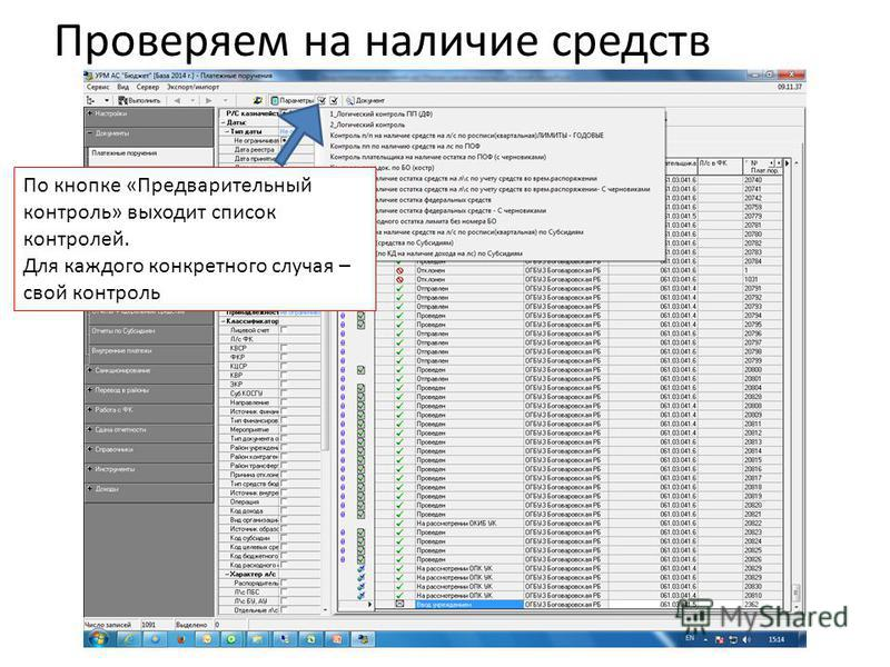 Проверяем на наличие средств По кнопке «Предварительный контроль» выходит список контролей. Для каждого конкретного случая – свой контроль