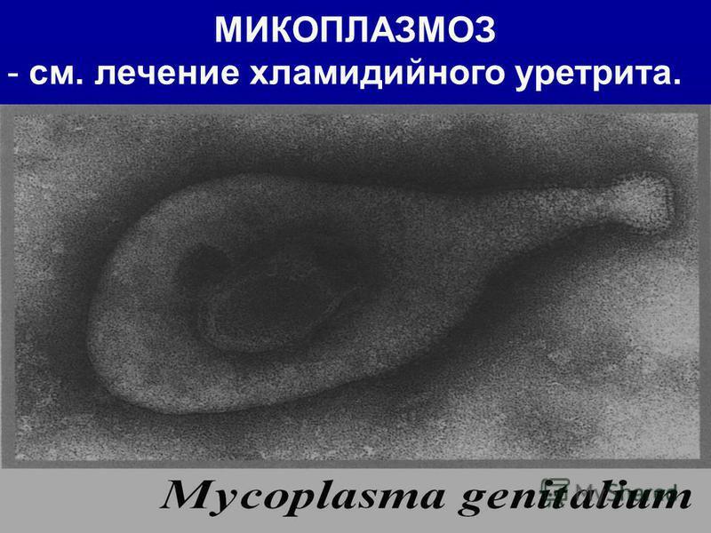 МИКОПЛАЗМОЗ - см. лечение хламидийного уретрита.