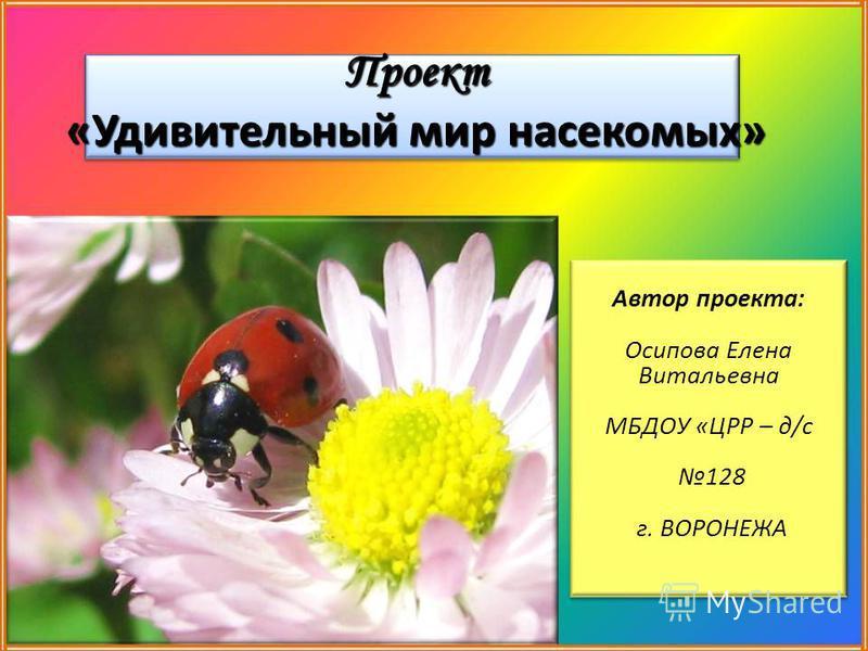 Проект «Удивительный мир насекомых» Автор проекта: Осипова Елена Витальевна МБДОУ «ЦРР – д/с 128 г. ВОРОНЕЖА