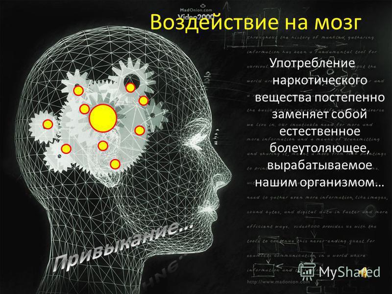 Воздействие на мозг Употребление наркотического вещества постепенно заменяет собой естественное болеутоляющее, вырабатываемое нашим организмом…