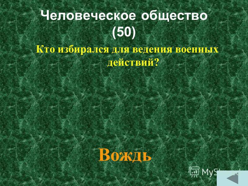 Человеческое общество (50) Кто избирался для ведения военных действий? Вождь