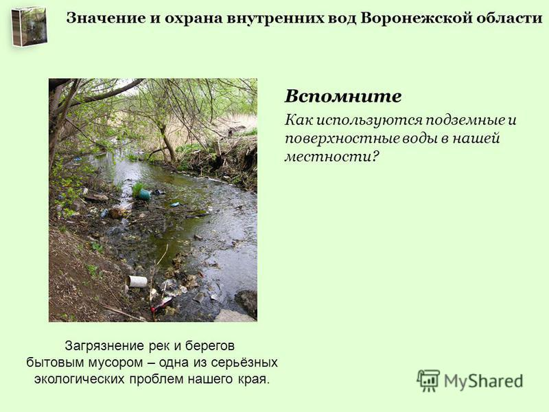 Вспомните Как используются подземные и поверхностные воды в нашей местности? Загрязнение рек и берегов бытовым мусором – одна из серьёзных экологических проблем нашего края.