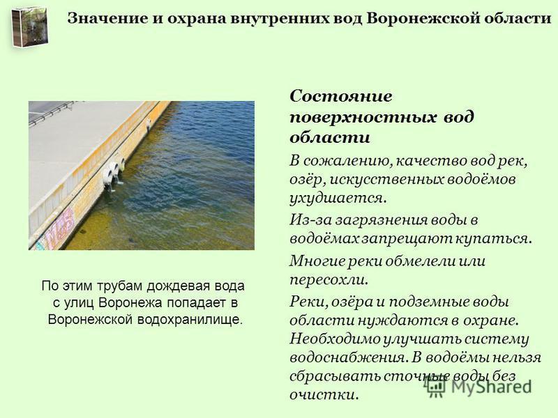 Значение и охрана внутренних вод Воронежской области Состояние поверхностных вод области В сожалению, качество вод рек, озёр, искусственных водоёмов ухудшается. Из-за загрязнения воды в водоёмах запрещают купаться. Многие реки обмелели или пересохли.