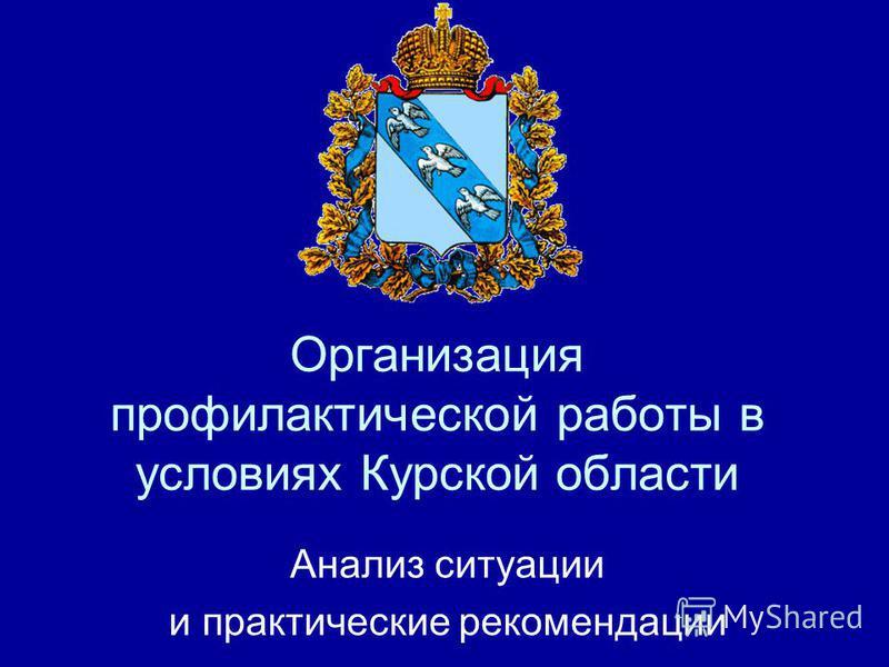 Организация профилактической работы в условиях Курской области Анализ ситуации и практические рекомендации