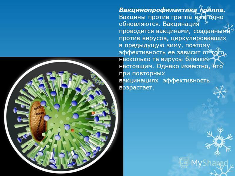 Вакцинопрофилактика гриппа. Вакцины против гриппа ежегодно обновляются. Вакцинация проводится вакцинами, созданными против вирусов, циркулировавших в предыдущую зиму, поэтому эффективность ее зависит от того, насколько те вирусы близки настоящим. Одн