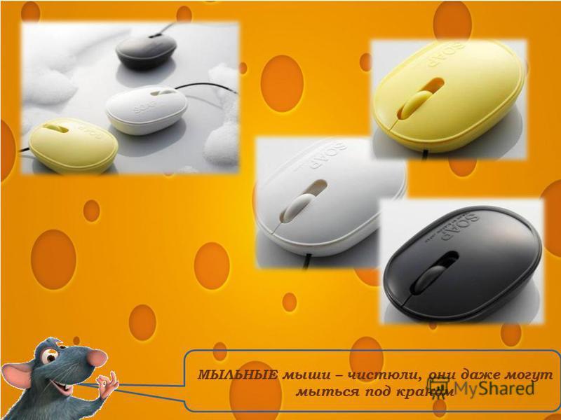 МЫЛЬНЫЕ мыши – чистюли, они даже могут мыться под краном
