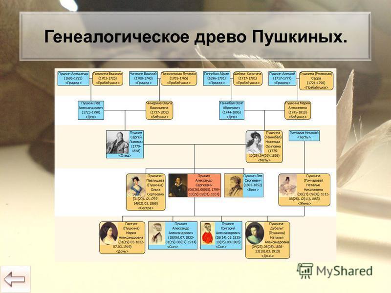 Генеалогическое древо Пушкиных.