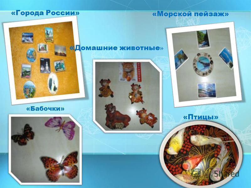 «Города России» «Морской пейзаж» « Домашние животные » «Бабочки» «Птицы»