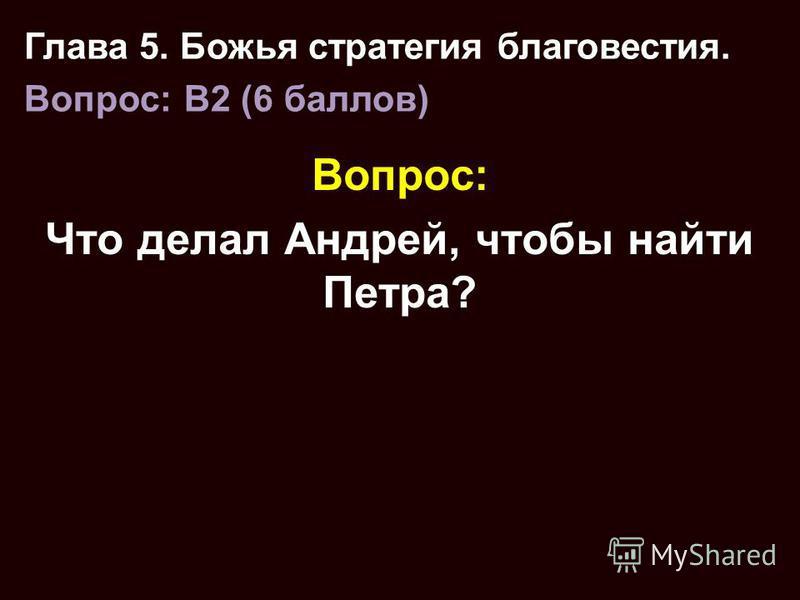 Вопрос: Что делал Андрей, чтобы найти Петра? Глава 5. Божья стратегия благовестия. Вопрос: B2 (6 баллов)