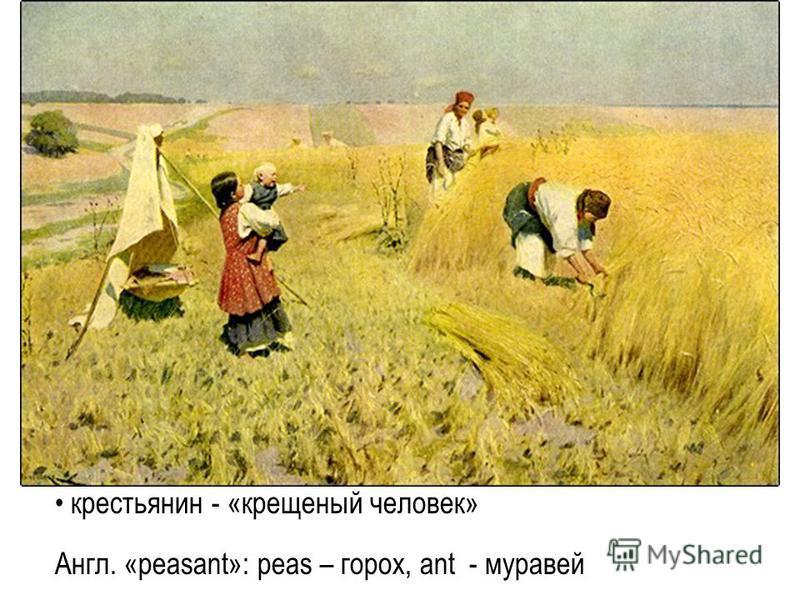 крестьянин - «крещеный человек» Англ. «peasant»: peas – горох, ant - муравей