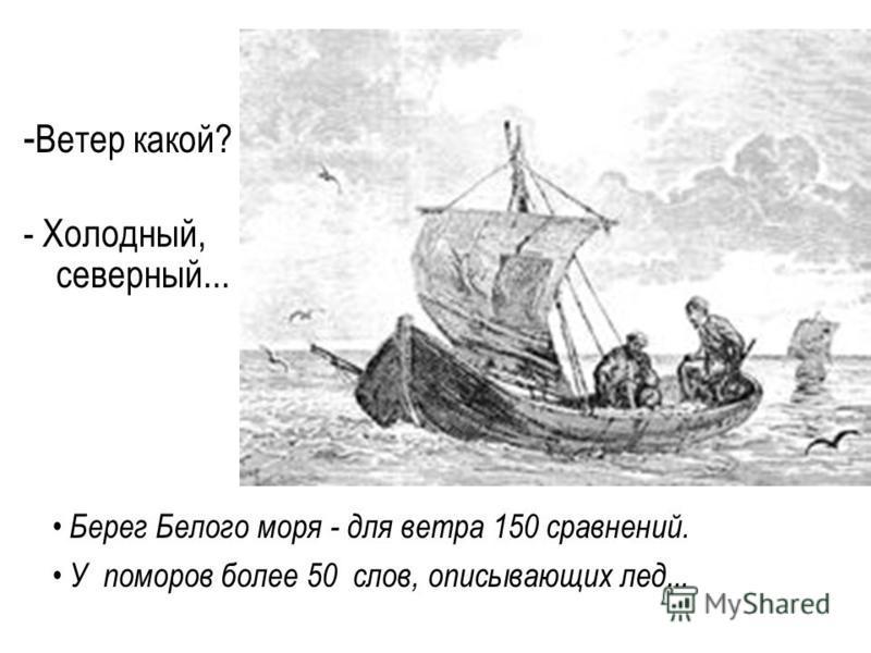 - Ветер какой? - Холодный, северный... Берег Белого моря - для ветра 150 сравнений. У поморов более 50 слов, описывающих лед...