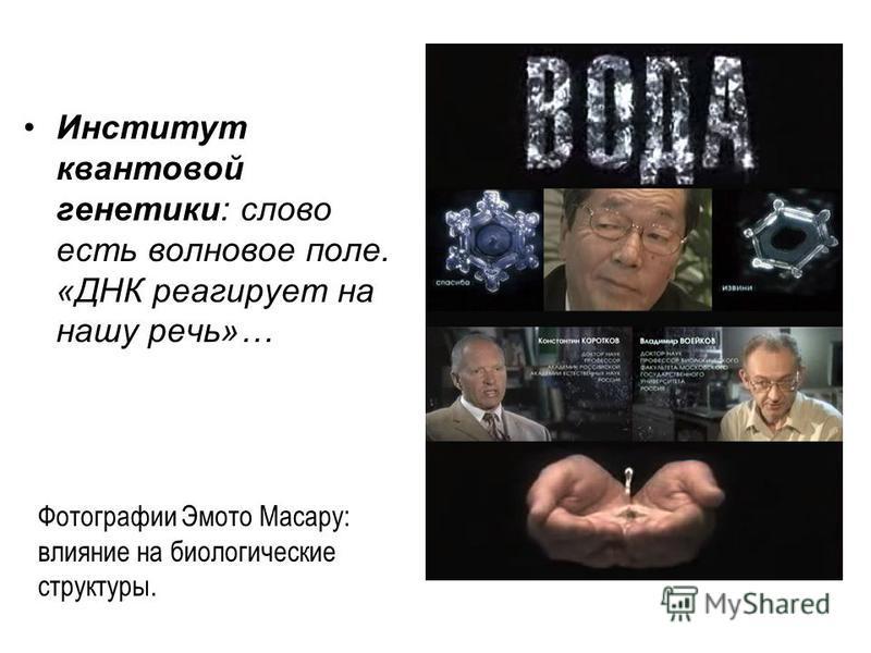 Инстотут квантовой генетоки: слово есть волновое поле. «ДНК реагирует на нашу речь»… Фотографии Эмото Масару: влияние на биологические структуры.