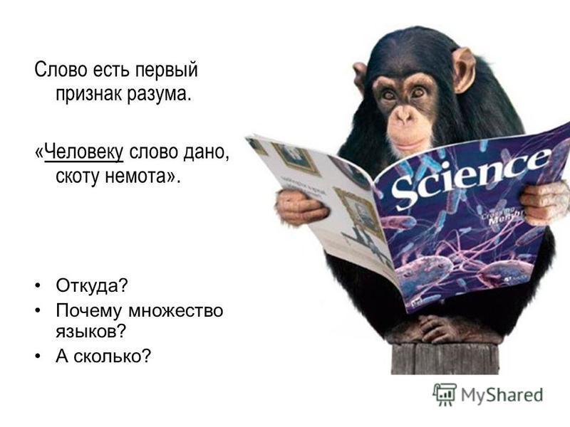 Слово есть первый признак разума. «Человеку слово дано, скоту немота». Откуда? Почему множество языков? А сколько?