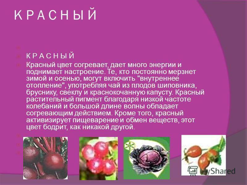 Цвет нас лечит и бодрит (Апельсины выводят яды, помидоры согревают, кукуруза улучшает настроение...) Вы чувствуете себя