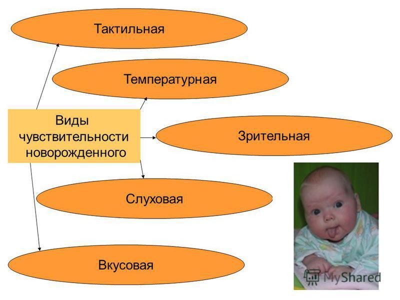 Виды чувствительности новорожденного Тактильная Зрительная Вкусовая Слуховая Температурная