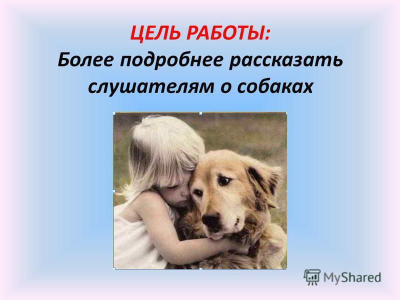 ЦЕЛЬ РАБОТЫ: Более подробнее рассказать слушателям о собаках