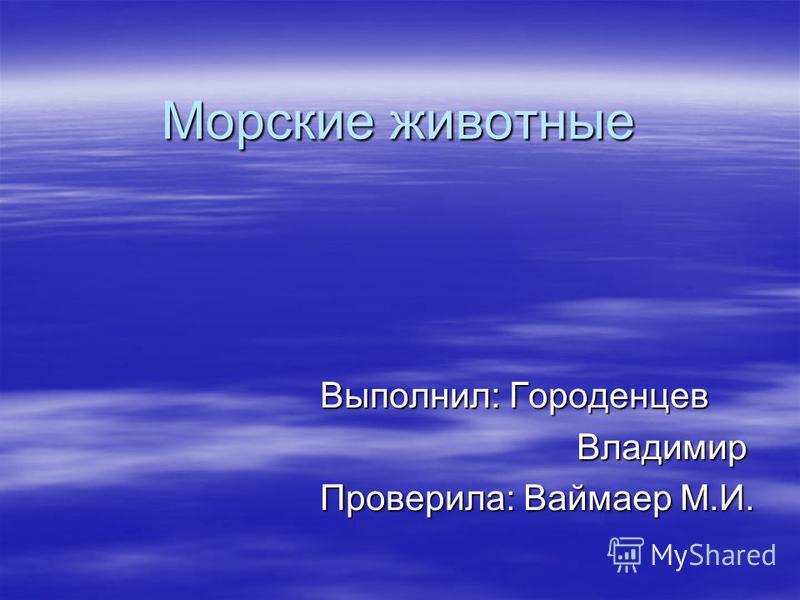 Морские животные Выполнил: Городенцев Владимир Владимир Проверила: Ваймаер М.И.