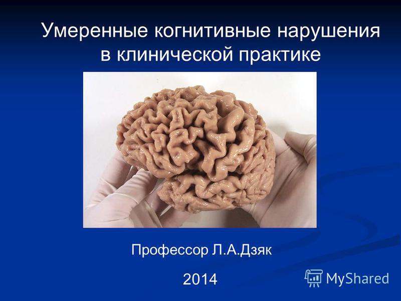 Умеренные когнитивные нарушения в клинической практике Профессор Л.А.Дзяк 2014