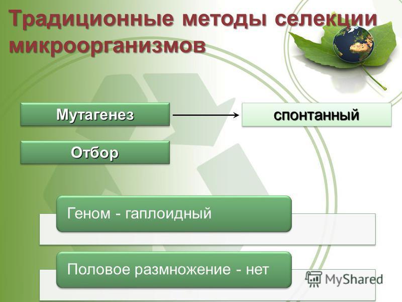 Традиционные методы селекции микроорганизмов Мутагенез Мутагенез Отбор Отбор спонтанный Геном - гаплоидный Половое размножение - нет