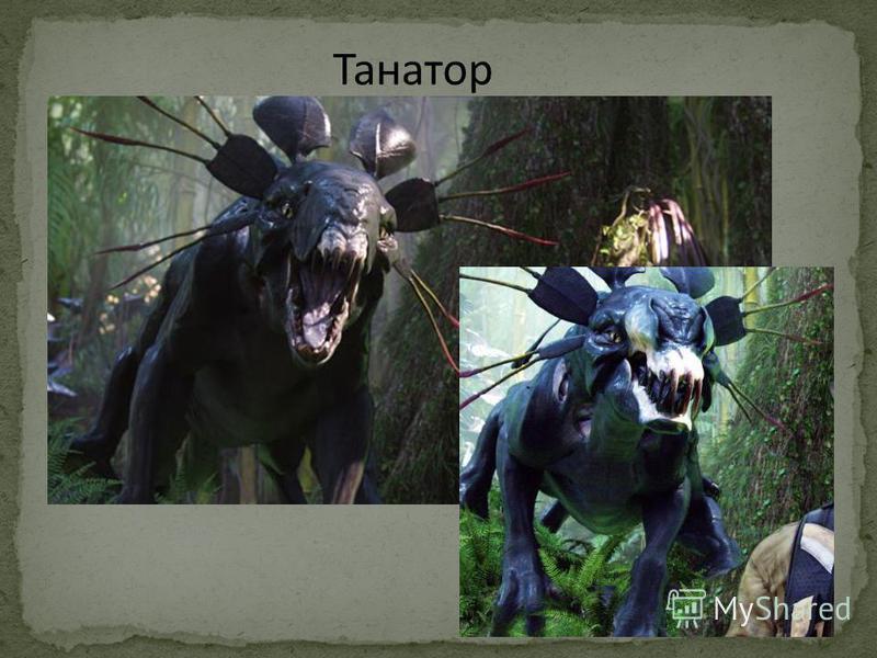 Танатор