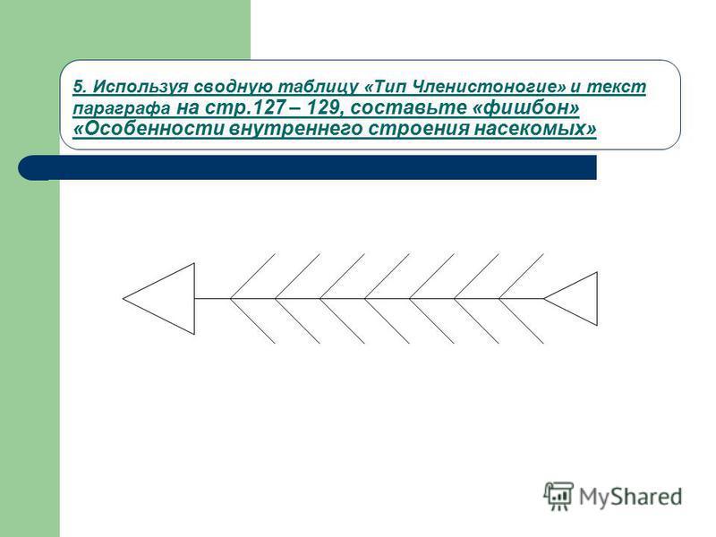 5. Используя сводную таблицу «Тип Членистоногие» и текст параграфа на стр.127 – 129, составьте «фишбон» «Особенности внутреннего строения насекомых»